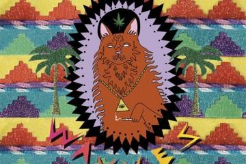 Waaves Album Art - King of the Beach