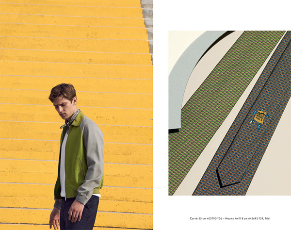 Hermes Cravates Spring Summer 2013