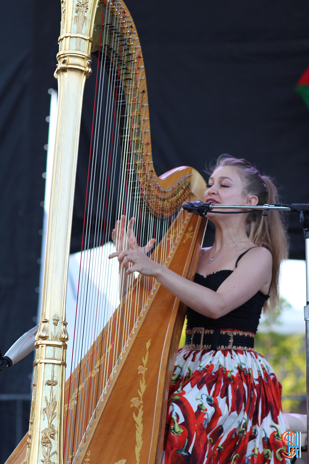 Joanna Newsom Pitchfork Music Festival 2013 Close