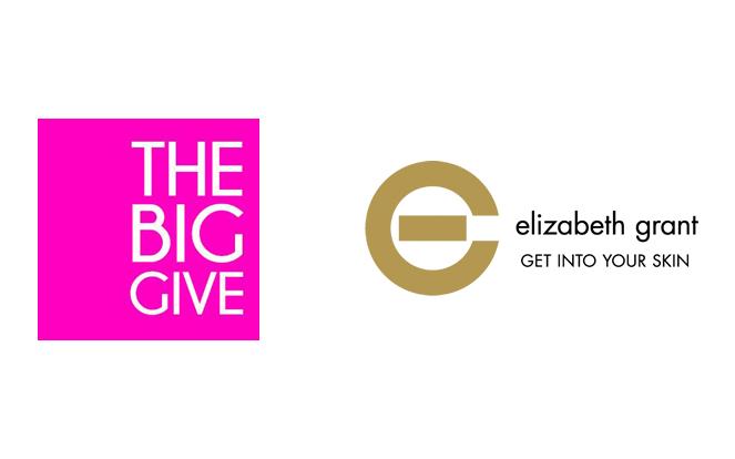 The Big Give Toronto 2014