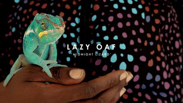 Lazy Oaf 2014 Winter Midnight Lizard Video