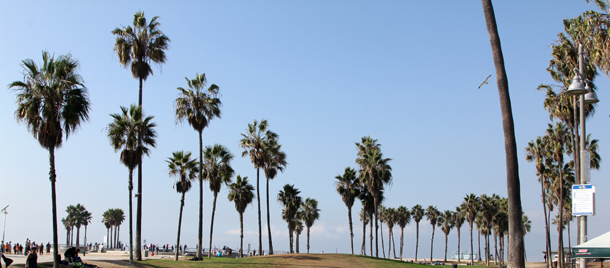 Street Style California Hawley Dunbar-5