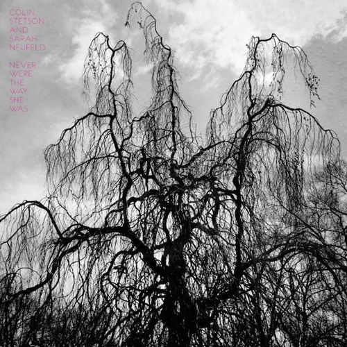 Sarah Neufeld Colin Stetson Never were the way she was LP