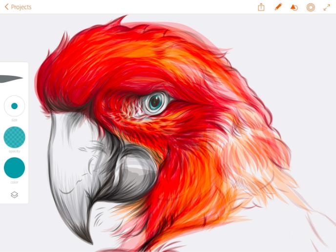 Draw by Adobe