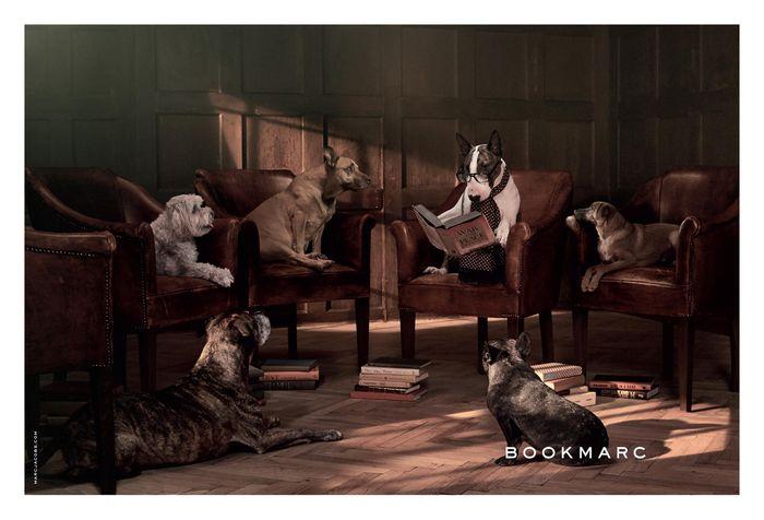 Bookmarc Fall 2015 Campaign