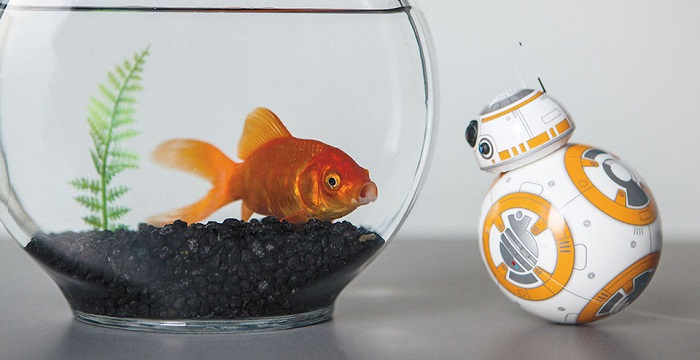 You Can Control Your Very Own Star Wars BB-8 Droid-4