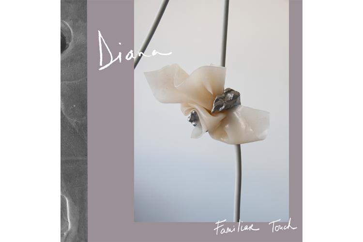 diana-album-art