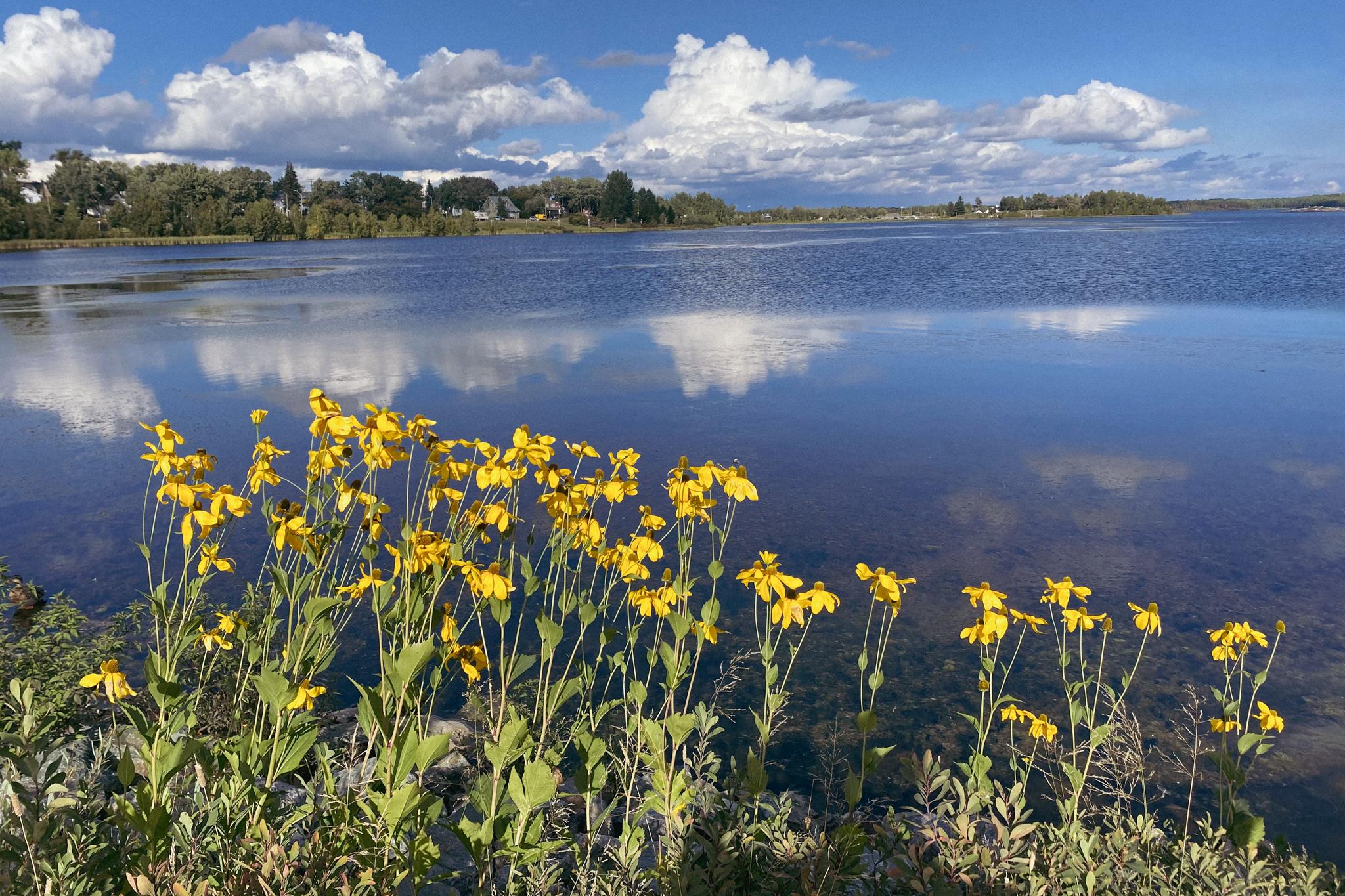 Rouyn-Noranda lake